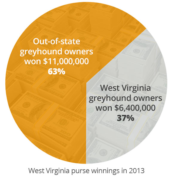 Out-of-state greyhound owners won 63%, West Virginia greyhound owners won 37% in 2013